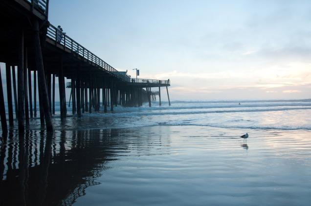 beach-1893352_1920